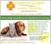 Logo for Chandler Gilbert Animal Hospital & Val Vista Animal Hospital